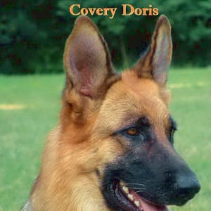 Covery
