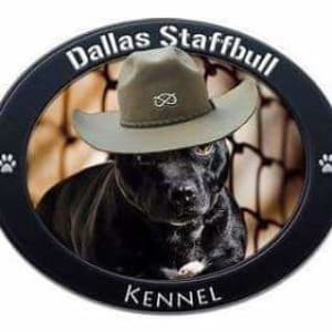 Dallas Staffbull