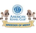 Ash's-Mystical 'AKC Breeder of Merit' Miniature/Toy