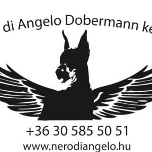 Nero Di Angelo