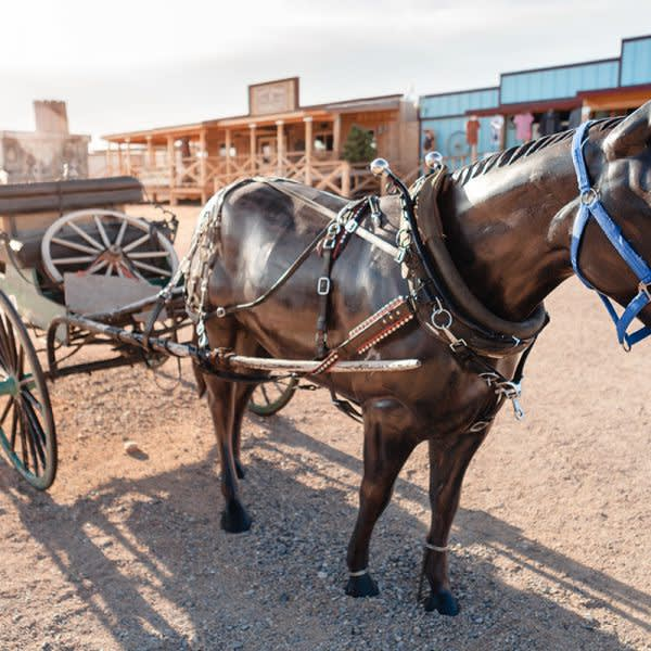 GRAND CANYON WEST RIM HOTEL CABIN STAY HUALAPAI RANCH