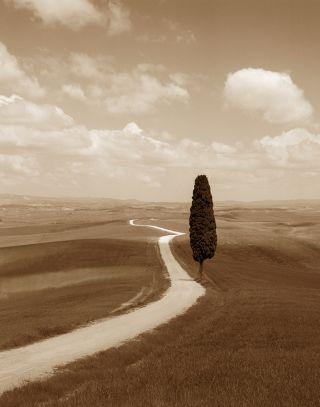 La Strada, Italia