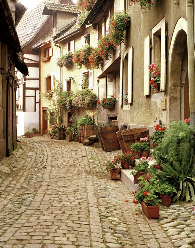 La Rue Fleurie, France