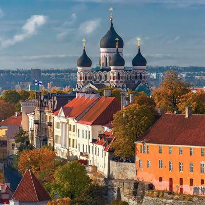 Stockholm og Tallinn via Østersjøen