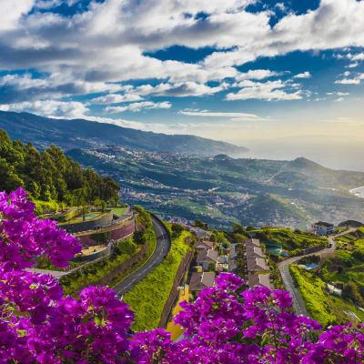 Frodige Madeira