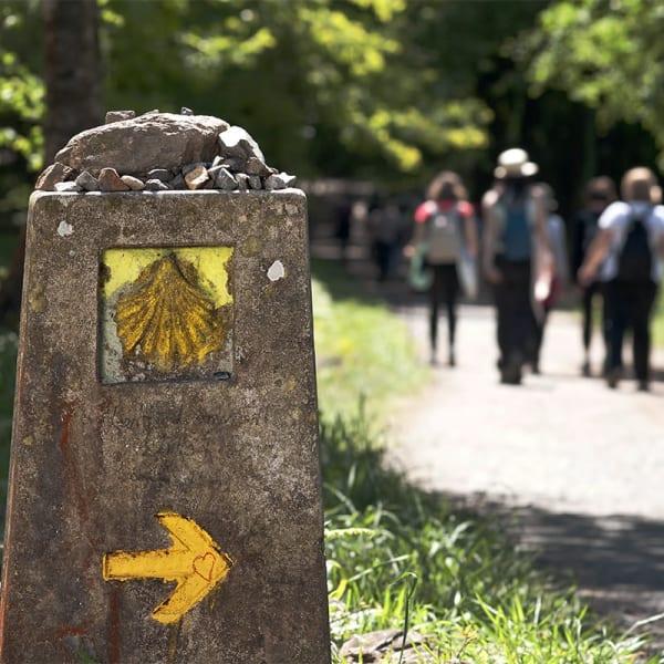 Pilegrimsveien til Santiago de Compostela