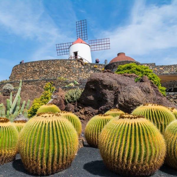 Drømmetur til Lanzarote