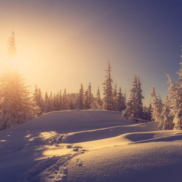 Vinterhelg med Tone