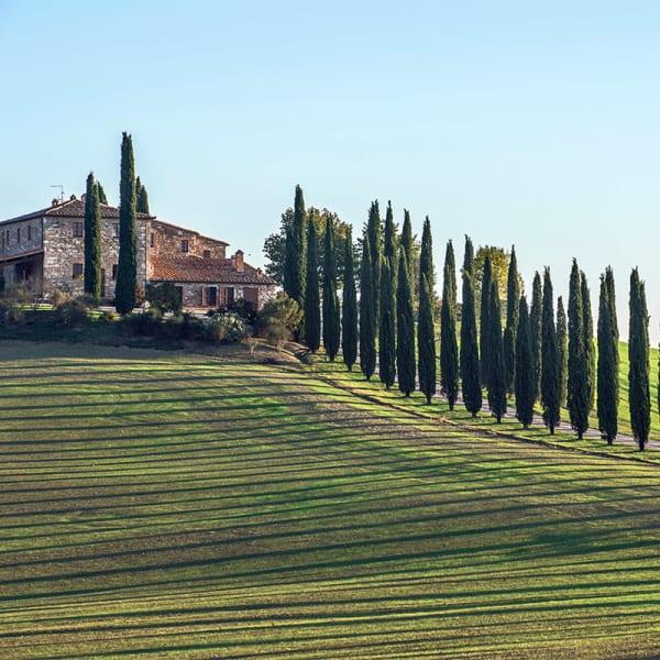Singeltur - Umbria & Toscana