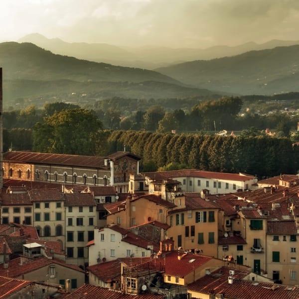 Rebeckas Lucca