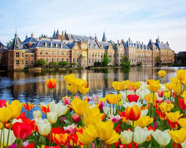 Haag (F, L)