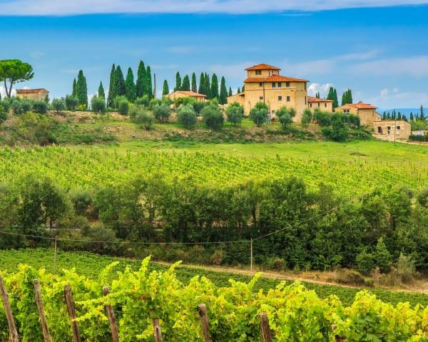 Lang halvdagsutflukt til Orvieto og vinsmaking (F)