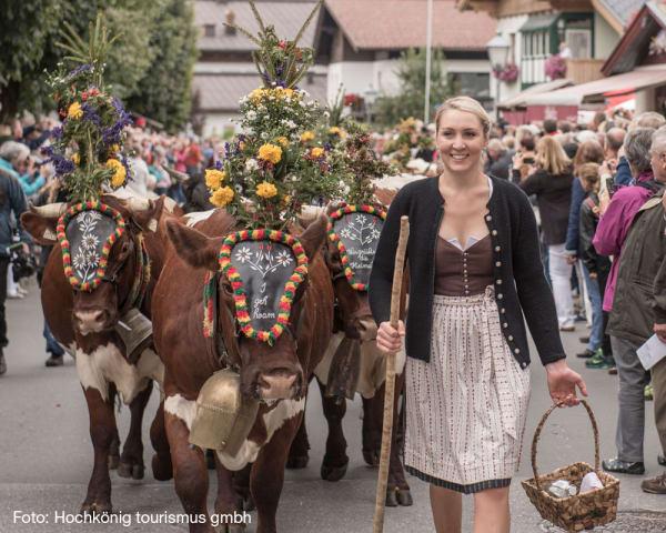 Almabtrieb i Maria Alm, et tradisjonelt og folklorist arrangement (F, M)