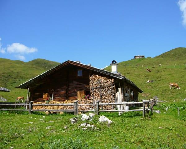 Heldagsutflukt til Liechtensteinklamm og Biberg, ca 50 km (F, M)