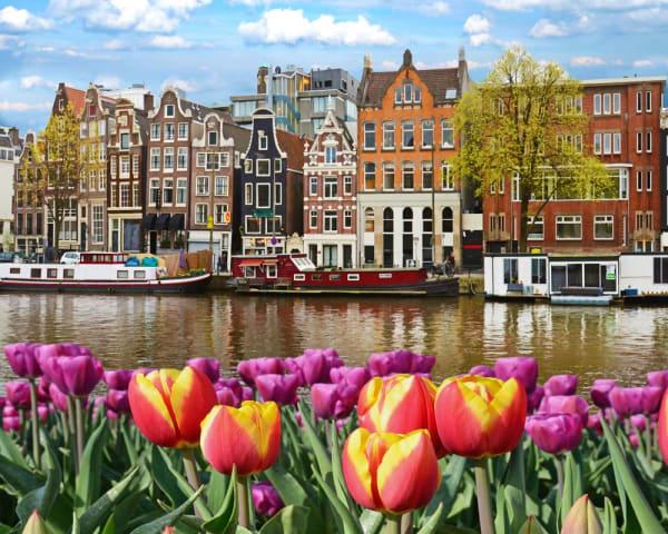 Byvandring i Amsterdam (F, L, M)