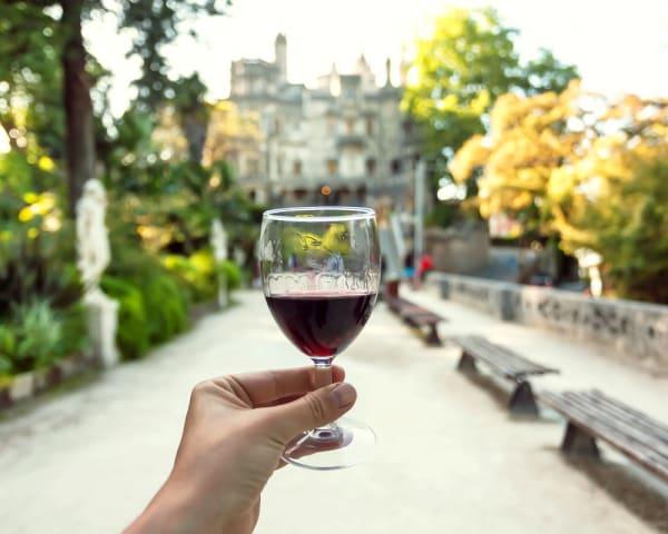 Utflukt vingård Adego do Cantor og vinsmaking (F, L, M)