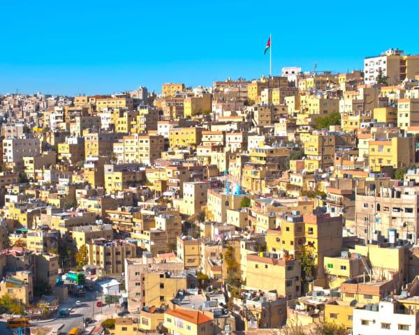 Amman (F, L)