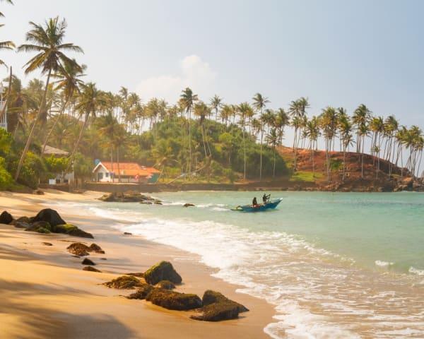 Negombo (F, M)