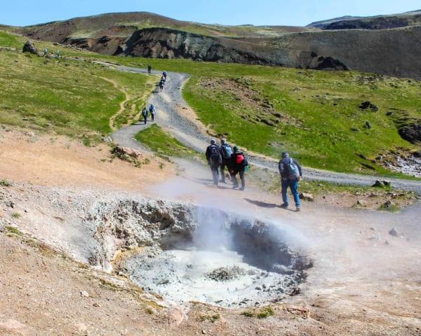 Hveragerði – vandretur i Reykjadalur (F, ML)