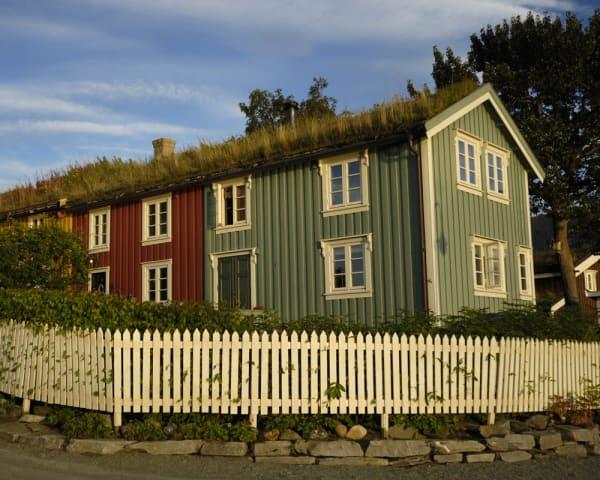 Trondheim – Mo i Rana (F, L, M)