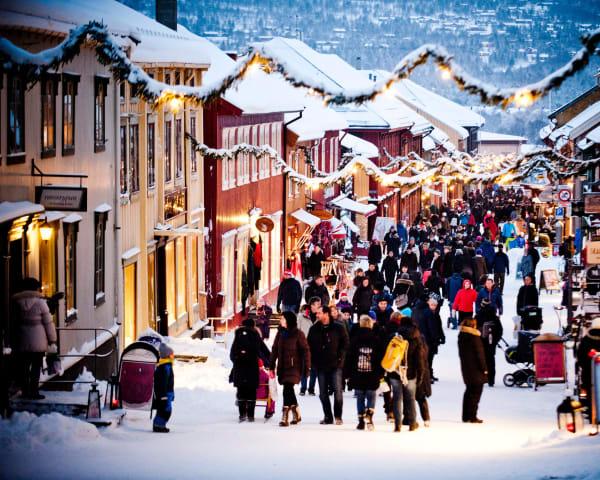Oslo/Trondheim til Røros (M)