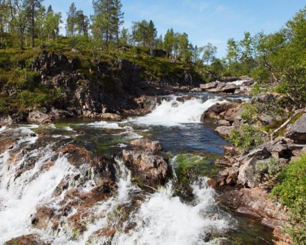 Vandring i Ånderdalen fra nord (F, M)
