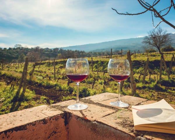 Etna & vinsmaking (F, L, M)