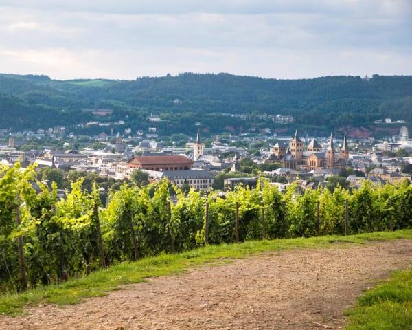 Vandring Schiefer-Wackenweg (F, M)  11 km