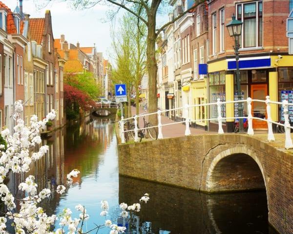 Halvdagsutflukt til Delft (F)