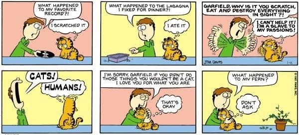 Garfield a vety v angličtine