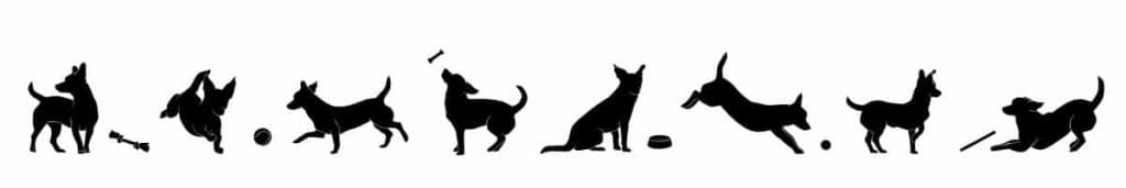 anglické mená pre psov