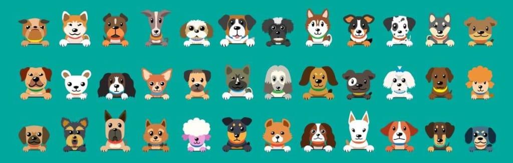 ilustrácia pes