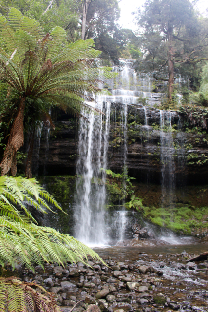 Russell Falls Mount Field National Park- Tasmania