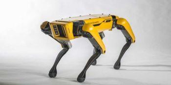 Robot Dog Will Open The Door