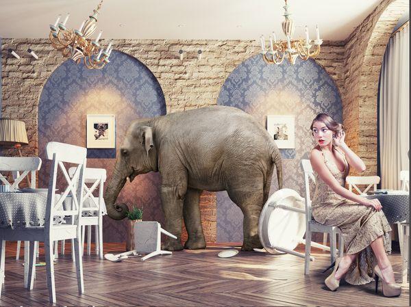 Montaje de un elefante adentro de un restaurante y una mujer sentada en una mesa pretendiendo ignorarlo