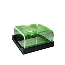 Speilkasse m/grønt lys