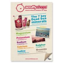 SC Showcard Mineraler