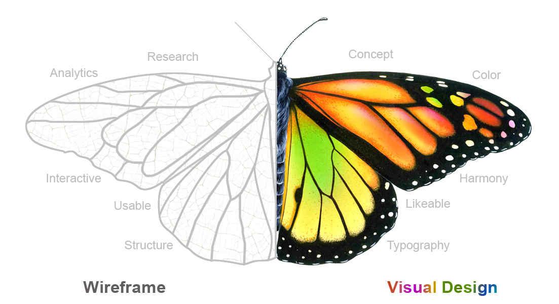 Visual Design Trends
