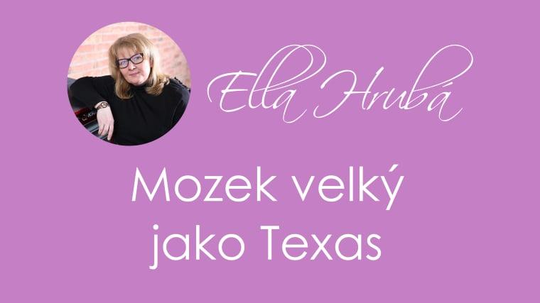 Video-nahled-Mozek-velky-jako-Texas