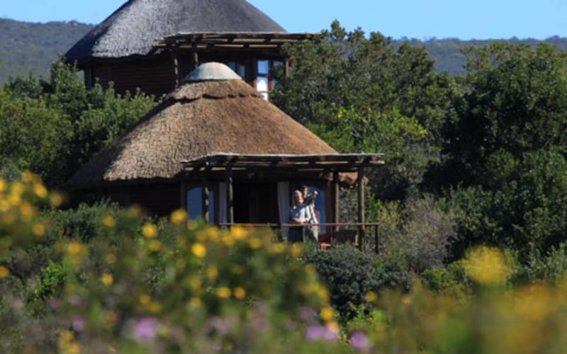 Garden Route Game Lodge:1 Night Stay in a Valley View Chalet + Meals & 2 Games Drives PP Sharing!
