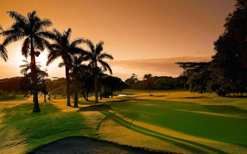 SELBORNE PARK GOLF CLUB: 4-Ball + CARTS for only R1 599!