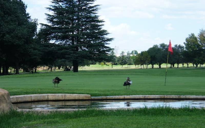Kempton Park Golf Club: 4-Ball special - just R559!