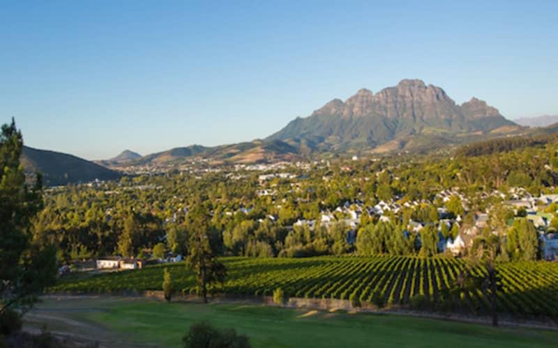 Stellenbosch Golf Club: 4-BALL Deal for only R1 249!