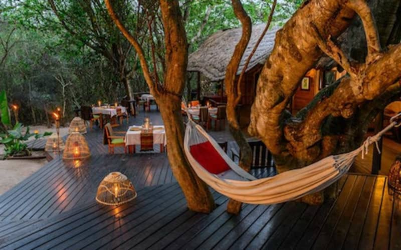 Kosi Forest Lodge: 3 Night stay for 2 + All Meals + Boat Trip for only R6 900 pps!