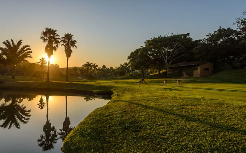 SAN LAMEER Country Club: 4-Ball deal INCLUDING Carts for only R1 979