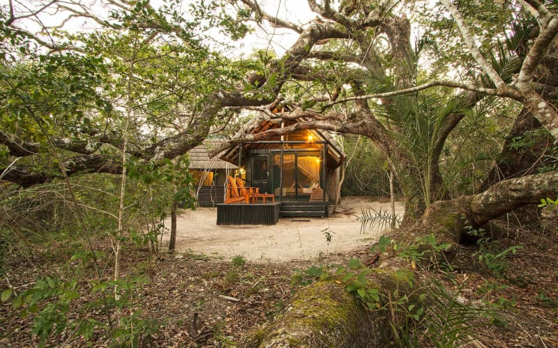 Kosi Forest Lodge: 1 Night stay for 2 + All Meals + Forest Walks!