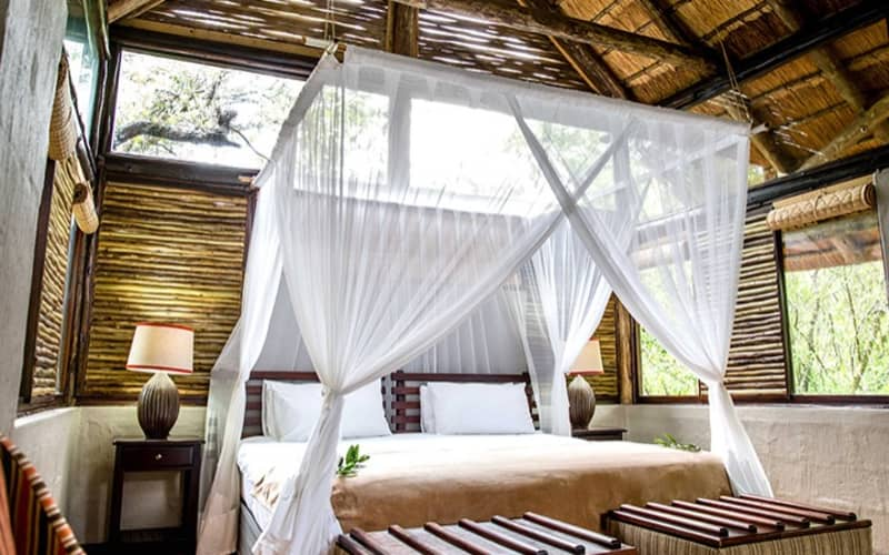 ROYAL THONGA SAFARI LODGE: Tembe Elephant Park- 1 Night Stay for up to 4 People + All Meals & Game Drive!