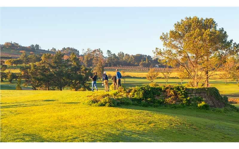 DEVONVALE GOLF & WINE ESTATE: 4-Ball INCLUDING CARTS for just R1 999!
