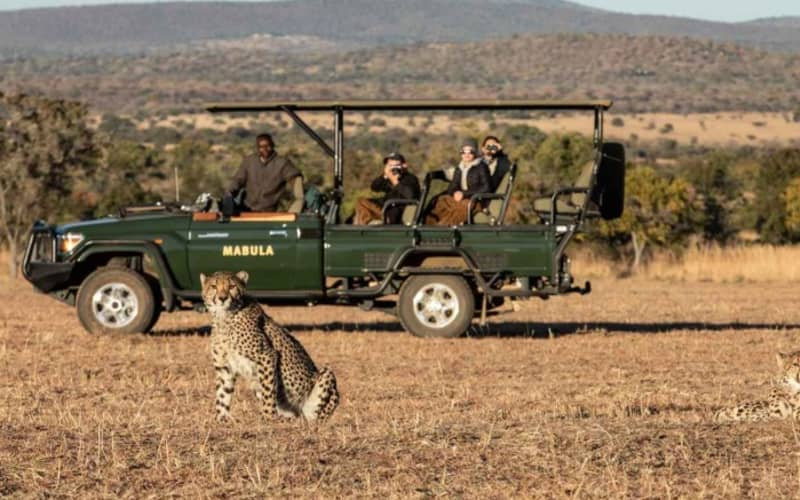 MABULA GAME LODGE:  All-Inclusive 1 Night FAMILY Stay for 4 + All Meals & Two Safaris Daily!