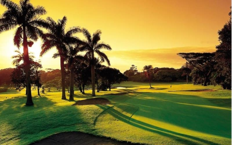 Selborne Golf Estate- 4 Ball + 2 Carts Shared for R1 699!